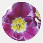Pegatina púrpura de Lilly