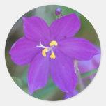 Pegatina púrpura del iris