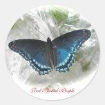 Pegatina púrpura manchado rojo de la mariposa