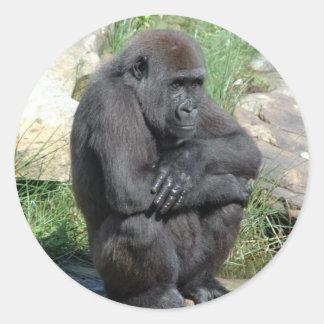 Pegatina que se sienta del gorila