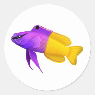 Pegatina real adaptable de los pescados del filón