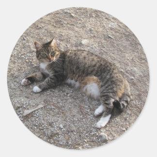 Pegatina: Reclinación del gato de Tabby