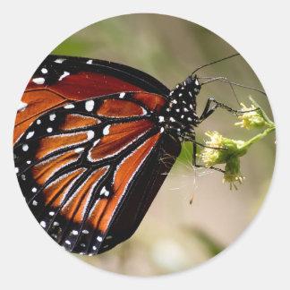 Pegatina redondo clásico de la mariposa, brillante