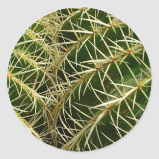 Pegatina redondo del cactus