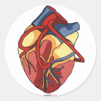Pegatina redondo del corazón anatómico