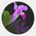 Pegatina reflejado de la orquídea de la belleza