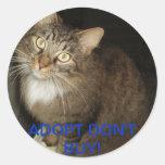 PEGATINA RESCATADO DEL CAT
