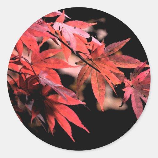 Pegatina rojo de Acer