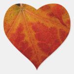 Pegatina rojo del corazón de la hoja de arce