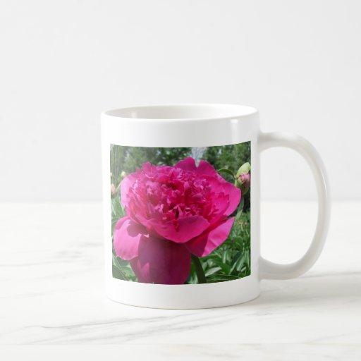 Pegatina rosado brillante de la flor del Peony Taza De Café