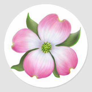 Pegatina rosado de la flor del Dogwood
