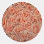 Pegatina rosado de los rosas