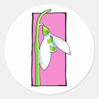 Pegatina rosado de Snowdrop