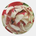 Pegatina rosado y blanco del tulipán