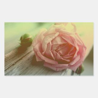 Pegatina/sello color de rosa rosados florales de pegatina rectangular