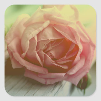 Pegatina/sello color de rosa rosados florales de