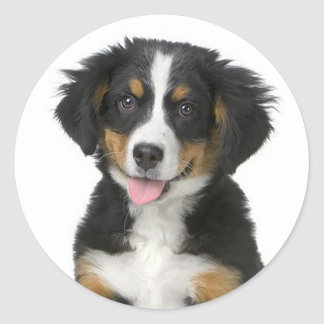 Pegatina/sello del perro de perrito de la montaña pegatina redonda