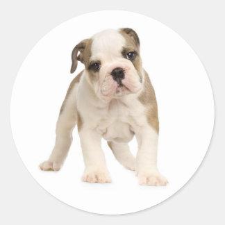 Pegatina/sello ingleses del perro de perrito del pegatina redonda