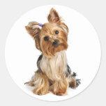 Pegatina/sellos del perro de perrito de Yorkshire