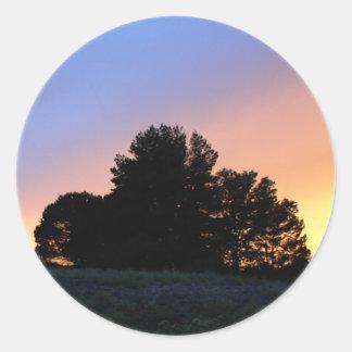Pegatina: Silueta del árbol en la puesta del sol Pegatina Redonda