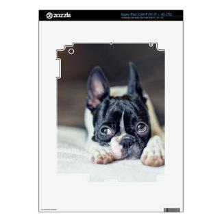 PEGATINA SKIN PARA iPad 3