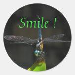 Pegatina sonriente de la libélula