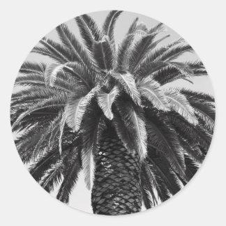Pegatina tropical de la palmera