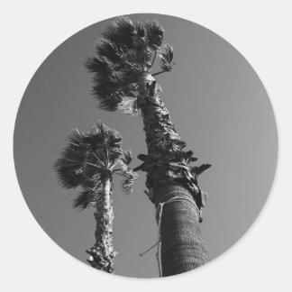 Pegatina tropical de las palmeras