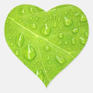 Pegatina verde de la hoja