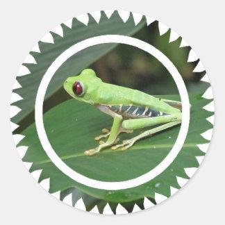 Pegatina verde de la rana arbórea de Red Eye
