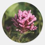 Pegatina - Wildflower