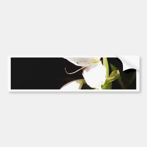 Pegatinas abstractos del lirio blanco pegatina de parachoque