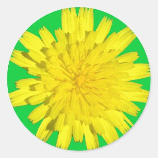Pegatinas amarillos de la flor