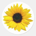 Pegatinas amarillos del sello del sobre de la flor