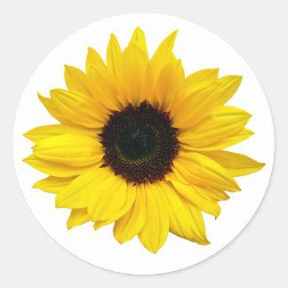 Pegatinas amarillos del sello del sobre de la flor pegatina redonda