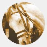 Pegatinas andaluces del caballo