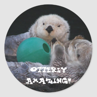 Pegatinas asombrosos de las nutrias de mar de Otte Etiquetas Redondas