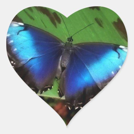 Pegatinas azules de la mariposa del ala pegatina corazon
