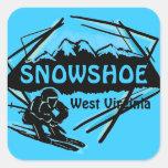 Pegatinas azules del logotipo del esquí de Virgini
