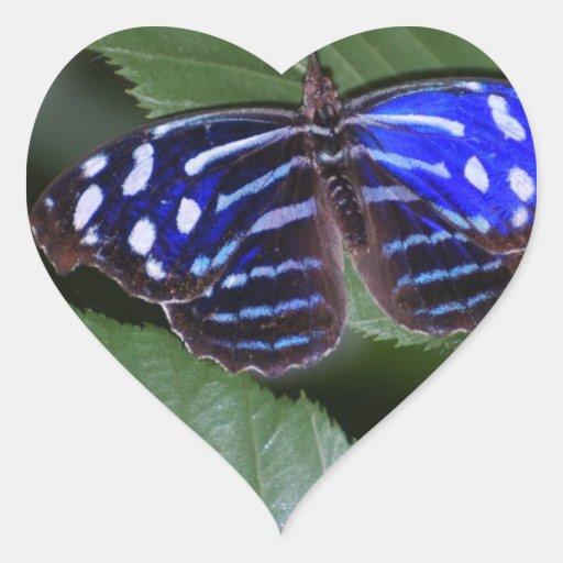 Pegatinas azules y blancos de la mariposa colcomanias de corazon personalizadas