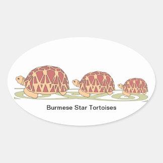 Pegatinas birmanos del trío de la tortuga de la pegatina ovalada