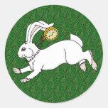 Pegatinas blancos BG verde del conejo Pegatina Redonda