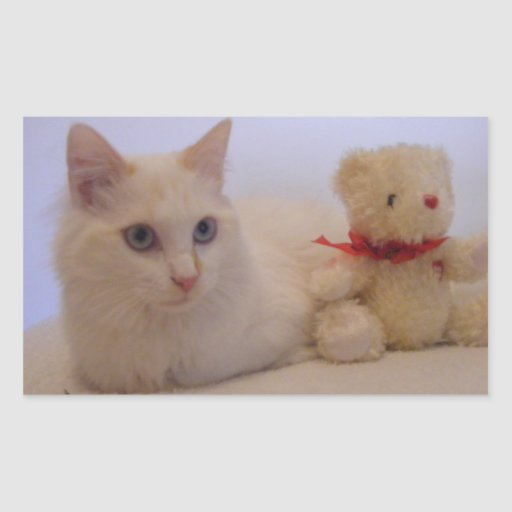 pegatinas blancos bonitos del gatito rectangular altavoz
