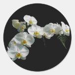 Pegatinas blancos de la orquídea pegatina redonda