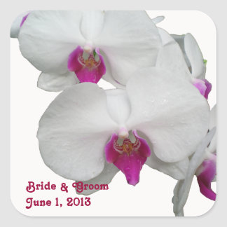 Pegatinas blancos de las orquídeas pegatina cuadrada
