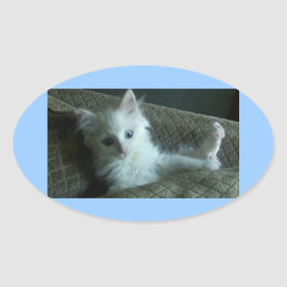pegatinas blancos lindos del gatito pegatina ovalada
