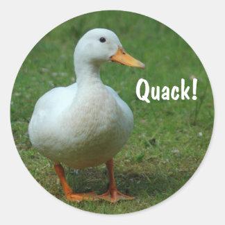 Pegatinas blancos lindos del pato etiqueta redonda