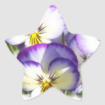 Pegatinas blancos y púrpuras de las violas calcomanías forma de estrellaes