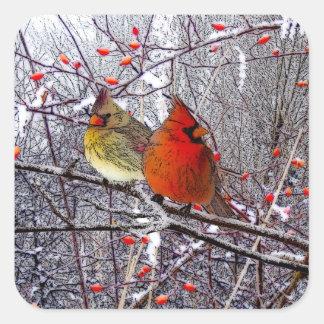 Pegatinas cardinales del navidad pegatina cuadrada