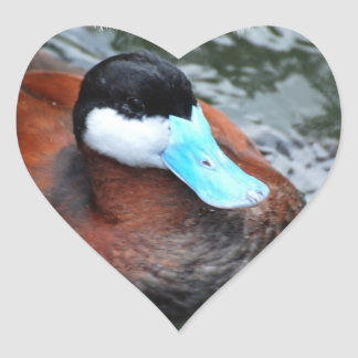 Pegatinas cargados en cuenta azul del pato calcomanías de corazones